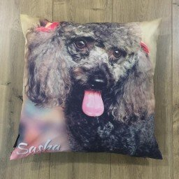 almofada personalizada 45x45cm poodle sasha